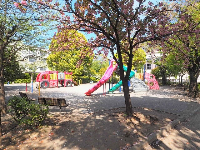 セザール第3蓮根周辺環境 城北交通公園