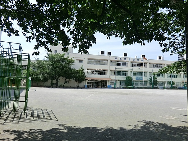 セザール池袋西周辺環境 板橋第五小学校