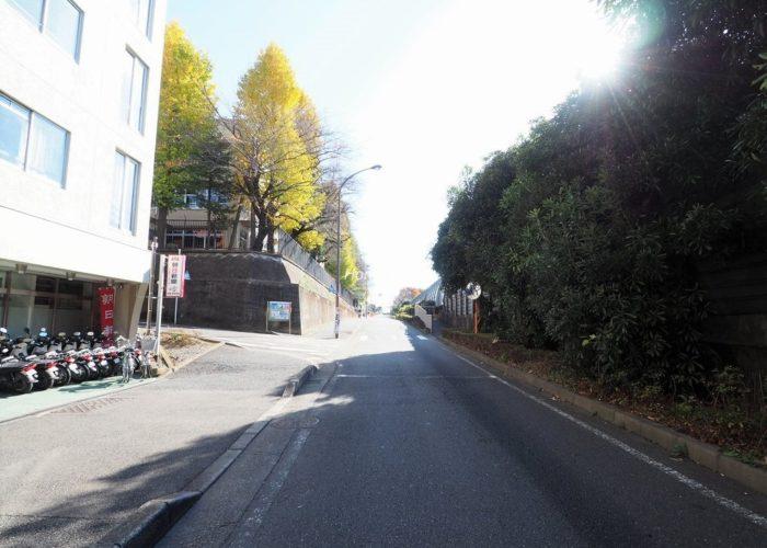 ニューハイム徳丸 前面道路