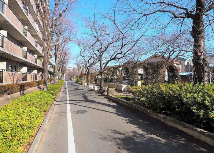 コアシティ西台 前面道路