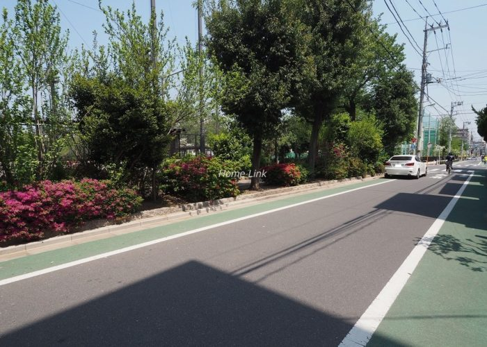 城北公園ハイツ 前面道路