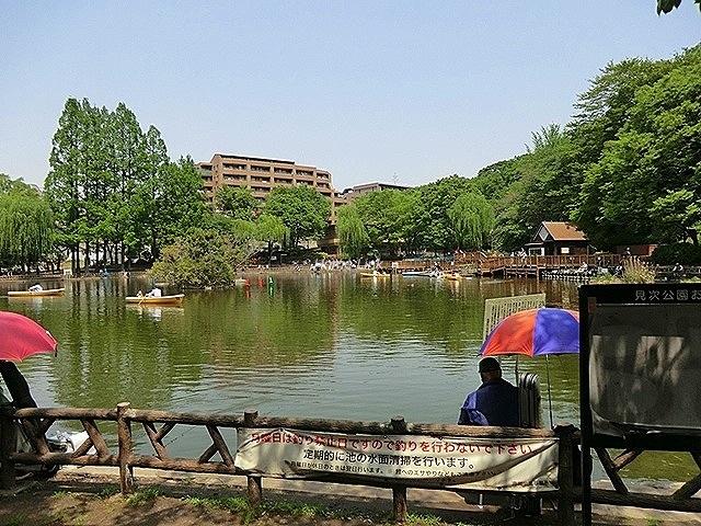 ニューライフ志村坂上周辺環境 見次公園