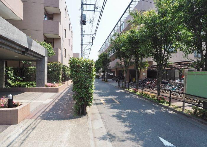 ルピナス赤塚ツインズガーデン壱番館 前面道路