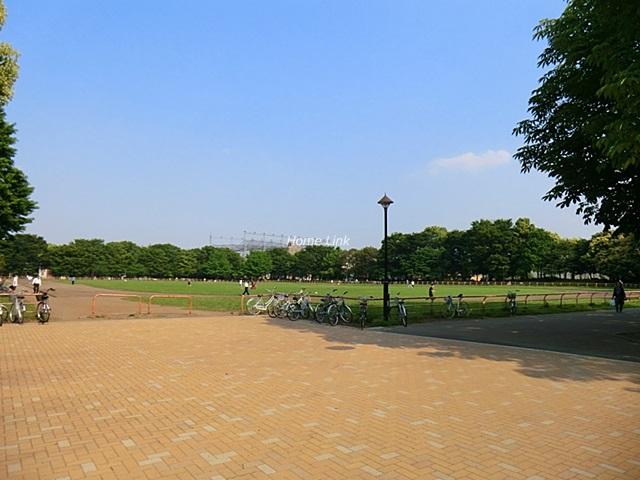 成増第3シャトレ周辺環境 光が丘公園