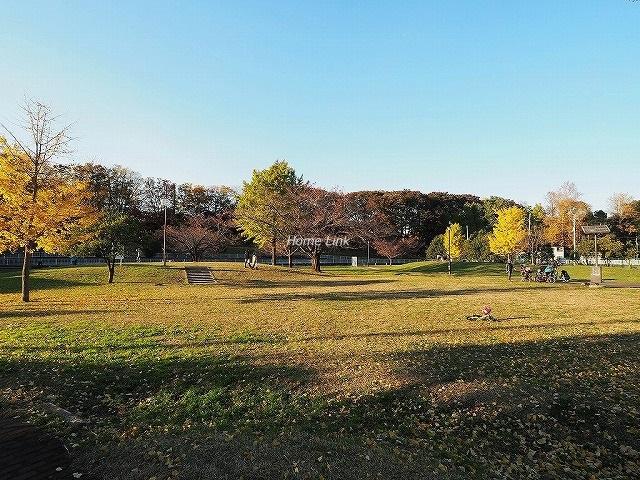 スターロワイヤル常盤台 壱番館周辺環境 城北中央公園