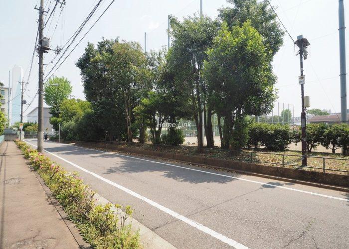 東武高島平サンライトマンション 前面道路