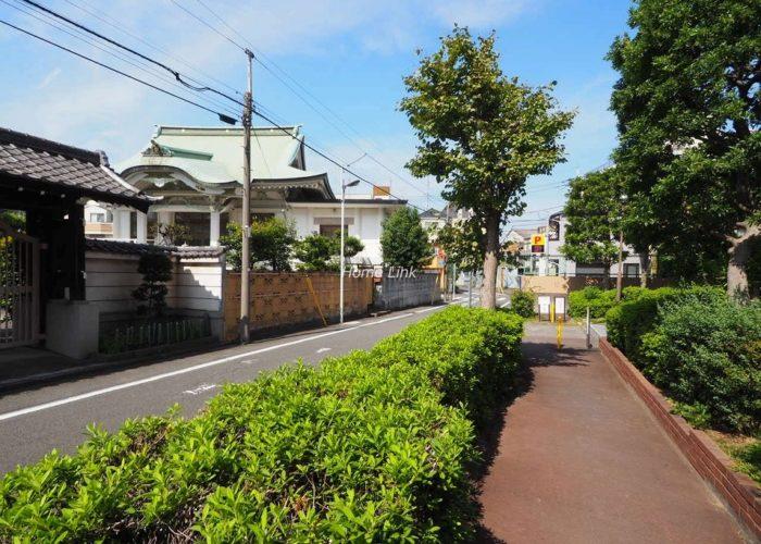 洋伸小豆沢公園マンション 前面道路