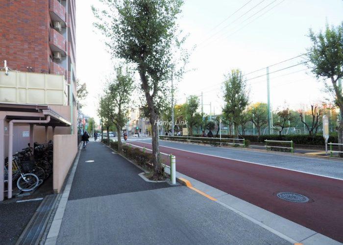 シンハイム高島平 前面道路歩道