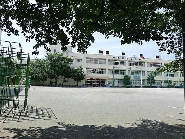 ライオンズマンション板橋中丸町周辺環境 板橋第五小学校