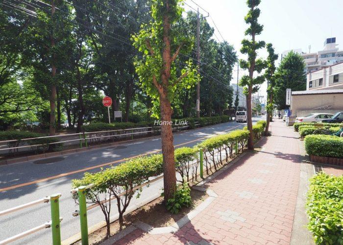 シャンボール志村坂上 前面道路