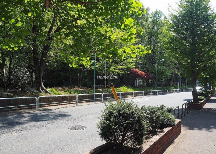 小豆沢パークファミリアA棟 前面道路歩道