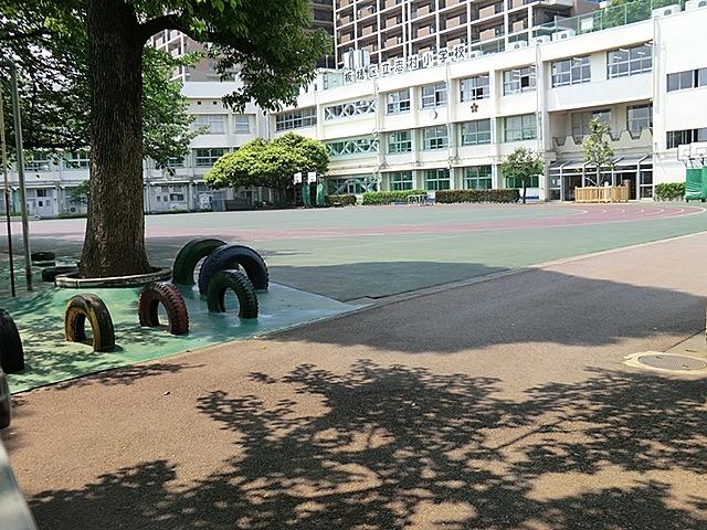 シャンボール志村坂上周辺環境 志村小学校