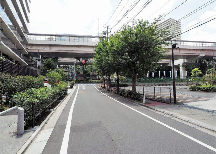 アデニウム志村三丁目 前面道路