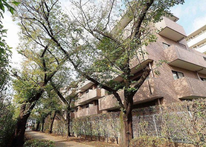 コニファーコート志村弐番館 緑道側の外観