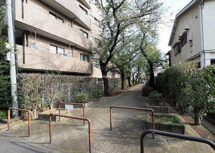 コニファーコート志村弐番館 緑道