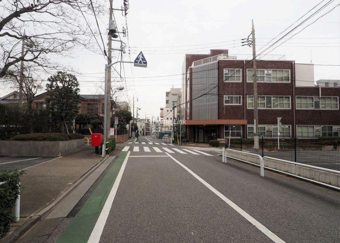 パルシティ徳丸 前面道路