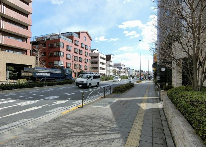 ジオときわ台プレミアムプレイス 前面道路歩道