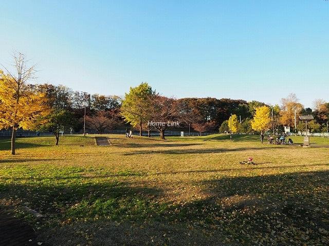 ジオときわ台プレミアムプレイス周辺環境 城北中央公園