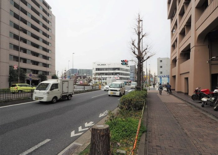 志村ハビテーション 前面道路歩道