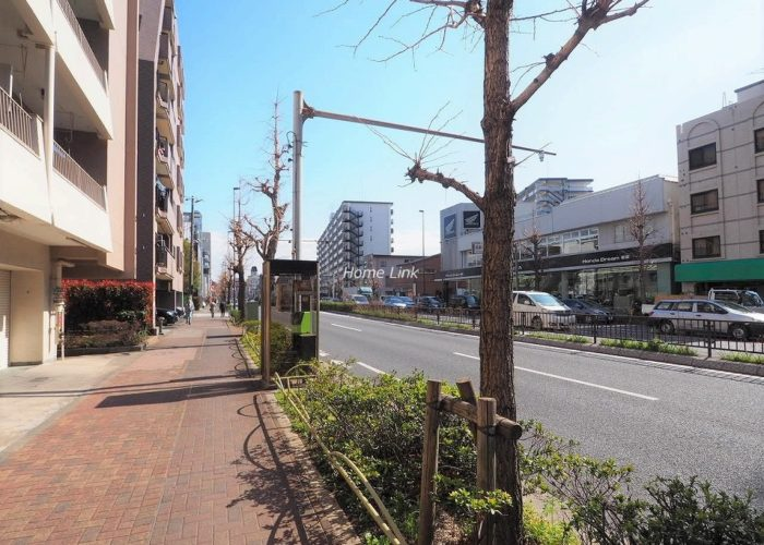 ウィスタリアマンション板橋志村 前面道路歩道