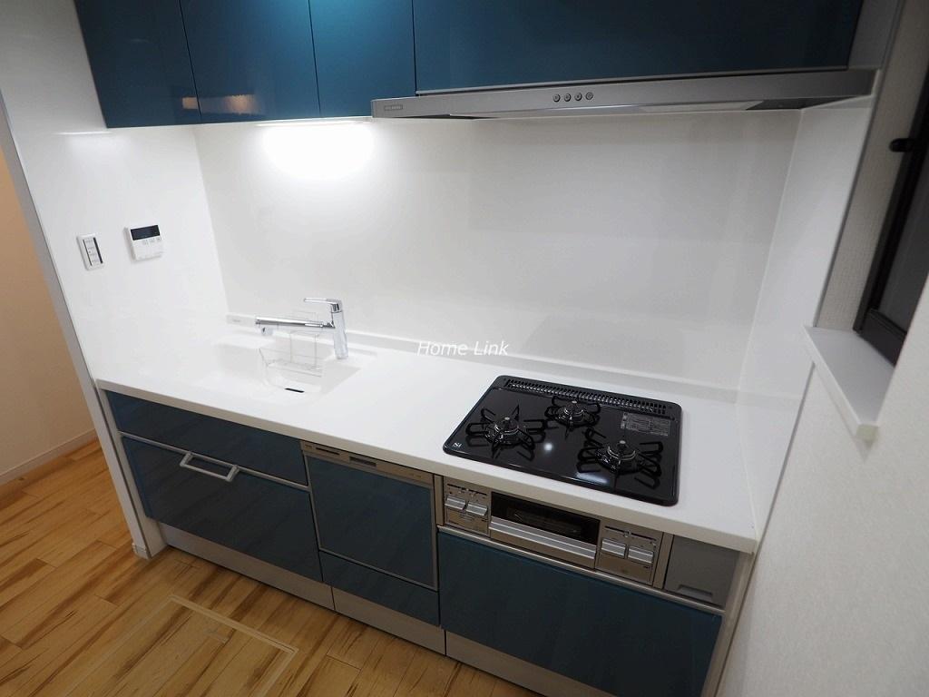 レーベンハイム常盤台1階 キッチンには食器洗浄機・床下収納庫付き