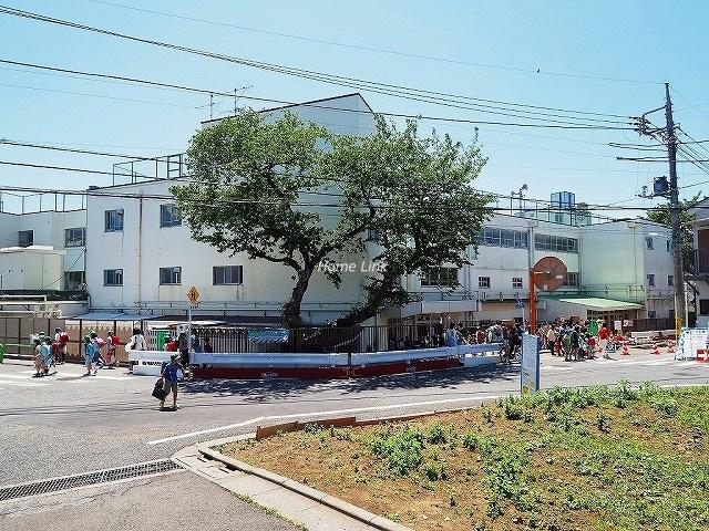 シティテラス成増周辺環境 成増ヶ丘小学校