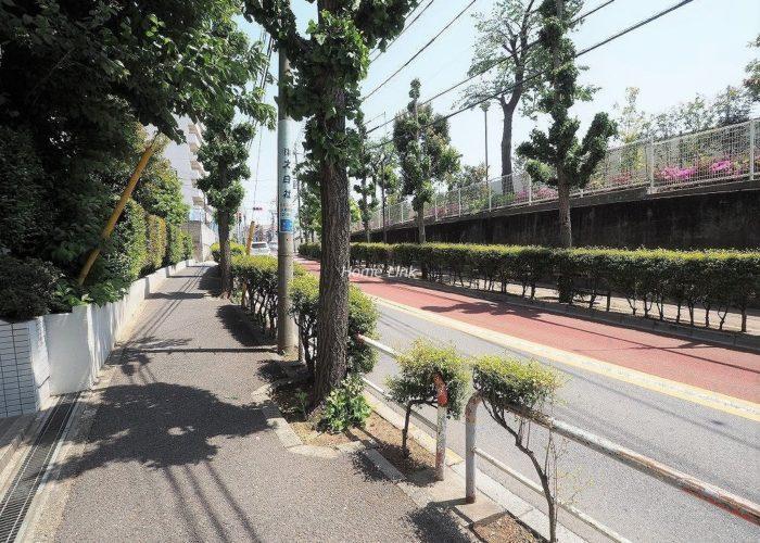 東急ドエルアルス志村坂上 前面道路歩道