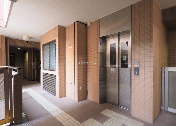 ルピナス赤塚ツインズガーデン弐番館 エレベーターホール