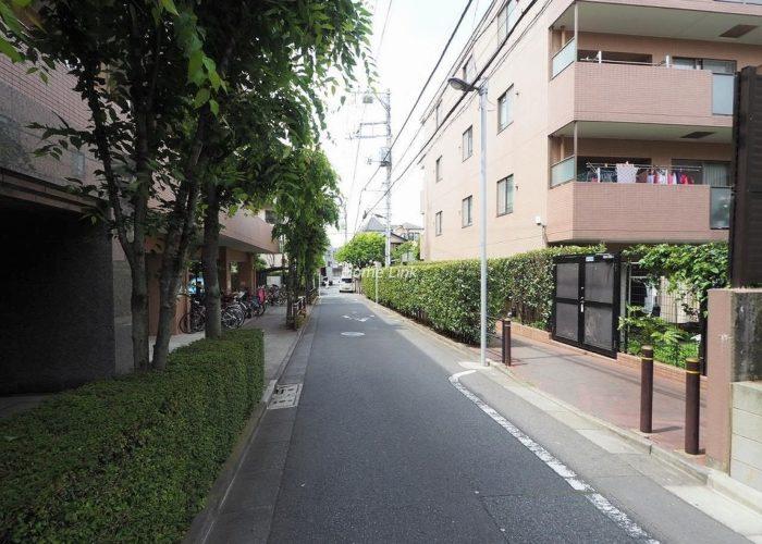 ルピナス赤塚ツインズガーデン弐番館 前面道路