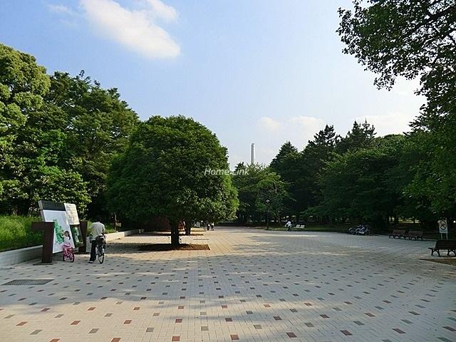 ルピナス赤塚ツインズガーデン弐番館周辺環境 光が丘公園