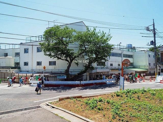 コスモ成増周辺環境 成増ヶ丘小学校