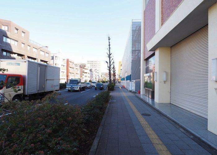 桜川グレースマンション 前面道路歩道