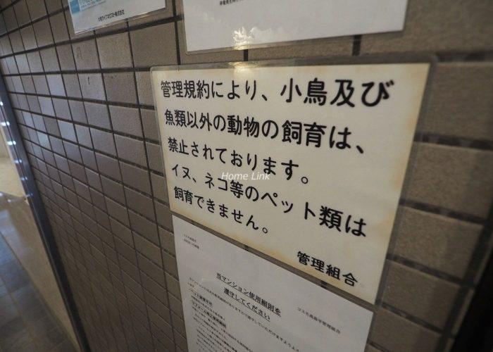 コスモ高島平 掲示物