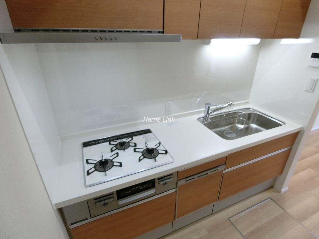 オーベル蓮根1階 システムキッチン