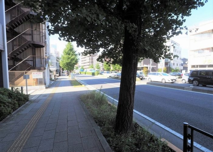 アプレシアス上板橋 前面道路歩道