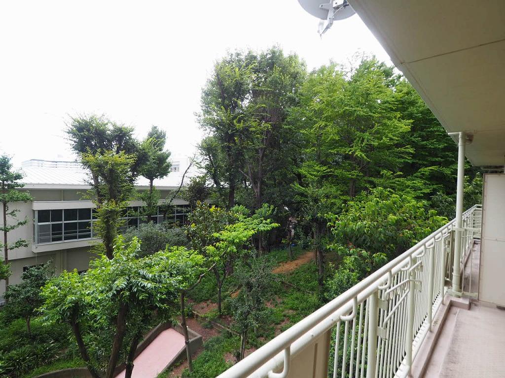 サンシティI棟3階 緑が目に入る陽当たりよい環境