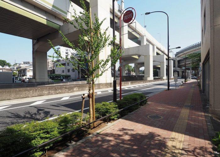 池袋シティハウス 前面道路歩道