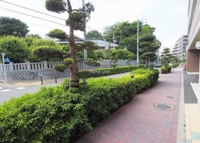 サンクレイドル徳丸ウインフォート 前面道路歩道