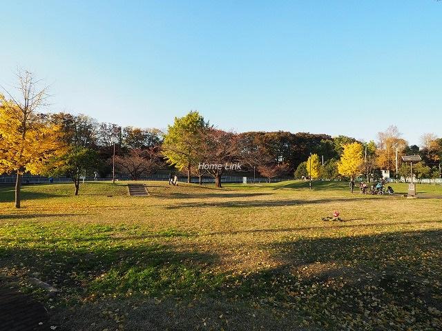 コーポラスときわ台周辺環境 城北中央公園