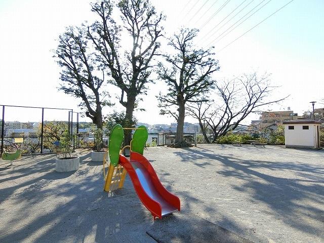 サンクレイドル徳丸ウインフォート周辺環境 徳丸高山公園