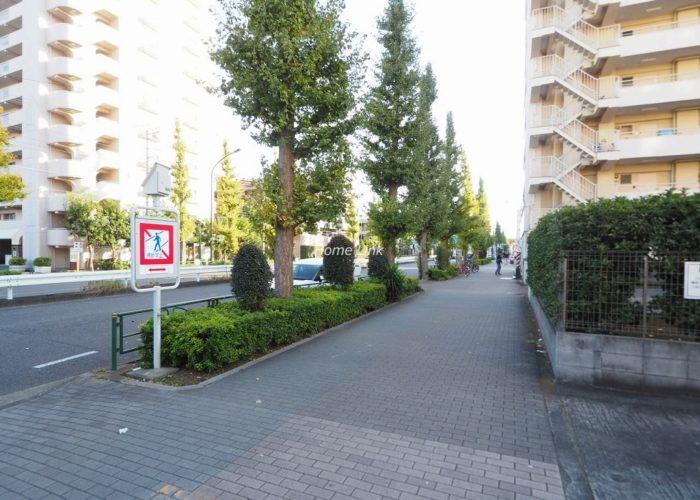 高島平サンパワー 前面道路歩道