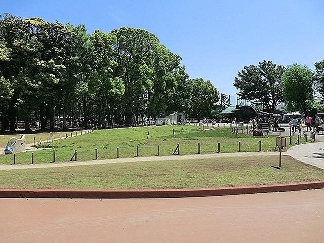 キャニオンマンション板橋周辺環境 東板橋公園