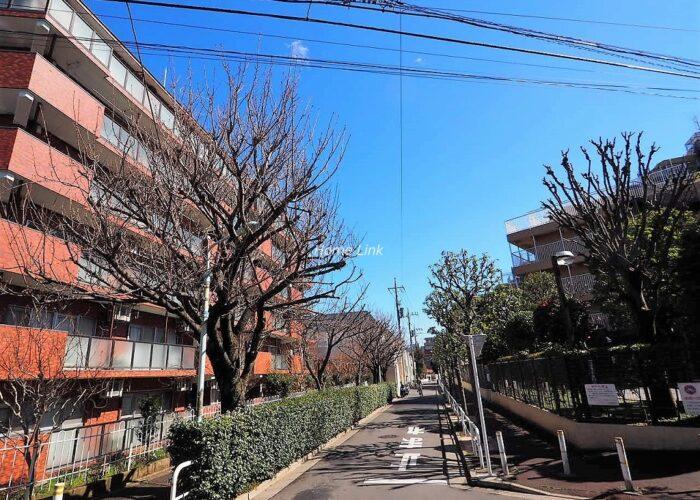 三田上板橋ガーデン 前面道路