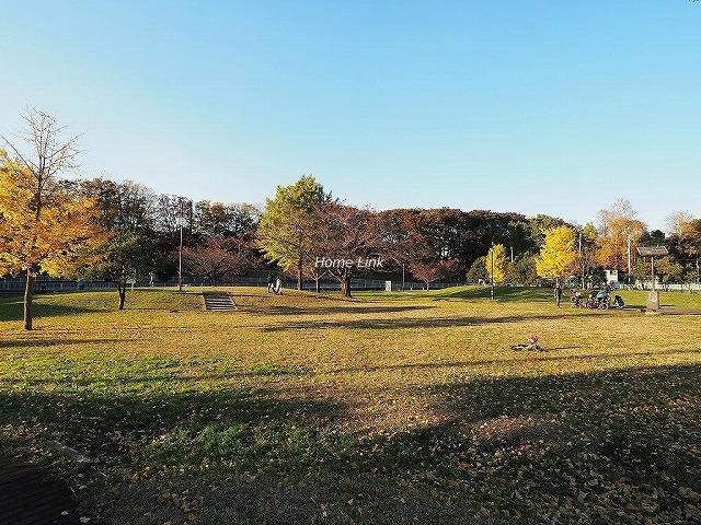 ライオンズマンションときわ台第5周辺環境 城北中央公園