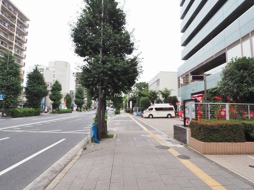 シャロン志村坂上セカンドステージ 前面道路歩道