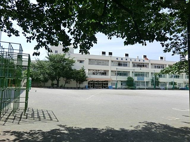リーフハイツときわ周辺環境 板橋第五小学校
