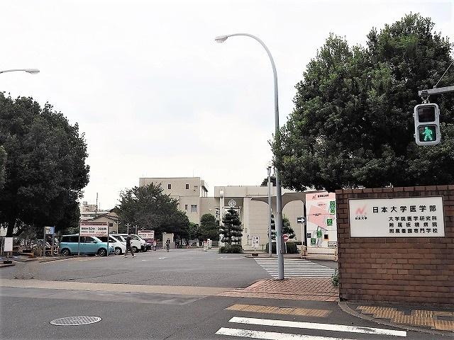 ハイビレッジ常盤台周辺環境 日本大学医学部附属板橋病院